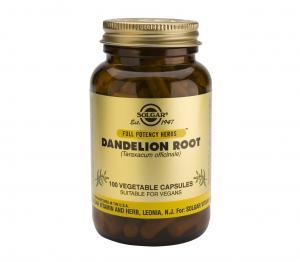 Корен от Глухарче / Dandelion Root х100 растителни капсули – SOLGAR