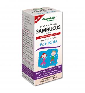 Самбукус Нигра Детски Сироп с Ехинацея и Прополис за Имунитет / Sambucus Nigra Natural Formula for Kids х120мл –  Fact Products, Inc.